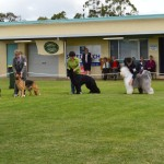 MtGambier show 20.4.14 028