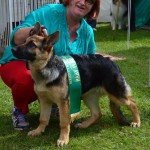 mt Gambier show 19th April 2014 024