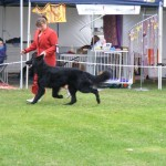 snow_mt_gambier_show_2