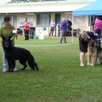 snow_mt_gambier_show_3